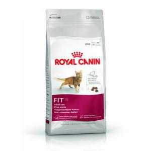 ROYAL CANIN Fit 32 Secco Gatto Gr. 400 - Mangimi Secchi Per Gatti Crocchette