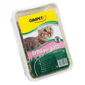 GIMPET Erba Gatta Profumato Dei Prati Grammi 150 Alimento Per Gatti