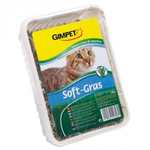 GIMPET Erba Gatto Soft Gras Grammi 100 Alimento Per Gatti Articoli Per Animali