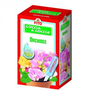 FITO Goccia Goccia Orchidee Cura Delle Piante