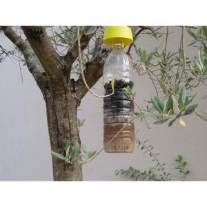 TAP TRAP Trappola per insetti volanti bayer pz.5 - Topicidi trappole