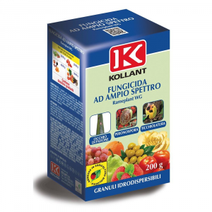 ADAMA Fungicida Rameplant Wg Kollant Grammi 200 Orto E Giardino