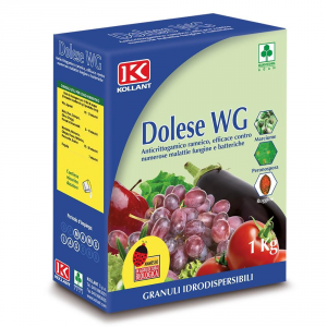 ADAMA Fungicida Dolese Wg Kollant Kg. 1 Orto E Giardino
