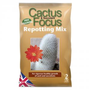 GROWTH TECHNOLOGY Cactus Focus Repotting Mix Terricci Giardino & Orto