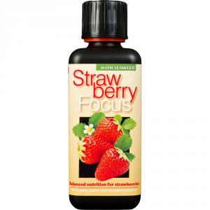 GROWTH TECHNOLOGY Strawberry Focus 300Ml Concimi Liquidi Orto E Giardino