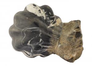 'Vaschetta conchiglia in marmo ''nero antico'' scolpito a mano in Italia AQ-13-na'