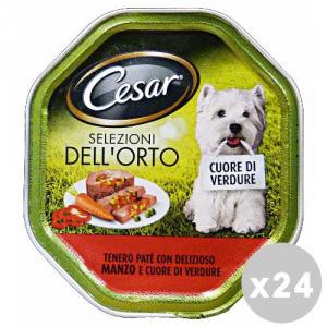Set 14 CESAR vaschetta 150 gr. umido patãŝ manzo/cuore di verdure