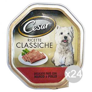Set 14 CESAR vaschetta 150 gr umido pate' manzo/pollo cibo per cani