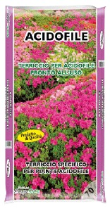 INFLOR Terriccio substrato lt 20 azalee kg 4 piante acifodile orto e giardinaggio