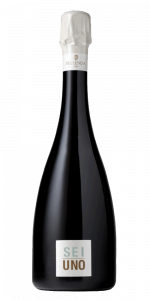 Sei Uno - Conegliano Valdobbiadene Prosecco Superiore  DOCG  Brut 2017 *Fermentazione in bottiglia*