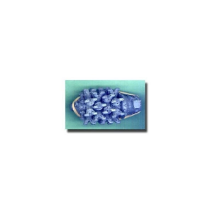 P&W R-4360 (CORNCOB) WASP