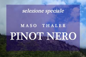 Selezione speciale Pinot Nero Maso Thaler - Verticale