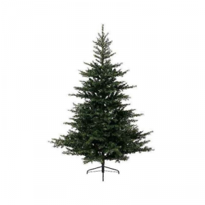 EVERLANDS Grandis fir pino 180cm / 1559 rami