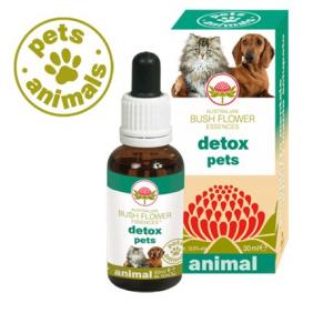 Detox Pets Fiori Australiani