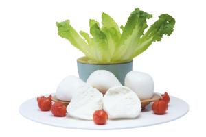 Mozzarella - Senza lattosio