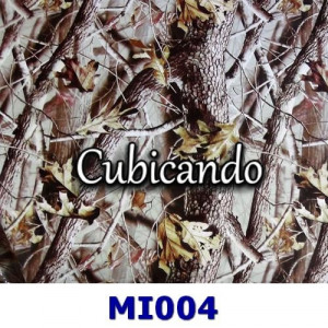 Film for cubicatura camouflage effect 4