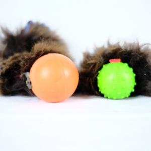 Sheepball