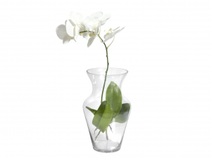 H&H Clear Glass Vase Uniflor H35 Furniture And Home Decorations Italian Design