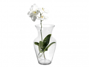 H&H Clear Glass Vase Uniflor H40 Furniture And Home Decorations Italian Design