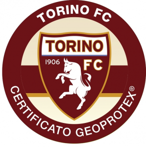 Torino Football Team Certified Protection device mobile phone radio frequency