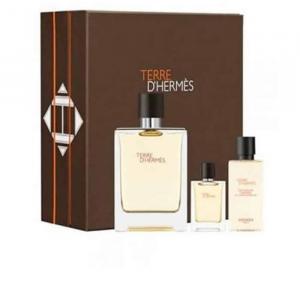 Hermes Terre D'Hermes Eau De Toilette 100ml Case