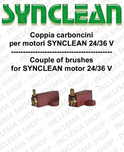 COPPIA di Carboncini Motore aspirazione per motori AMETEK  -  2 x Cod: 42015