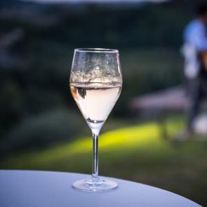 Degustazione vino biologico, formaggi e confetture