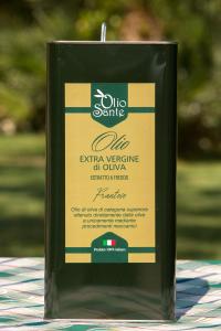 Olio EVO Frantoio 5L 2018/19 - Olio extravergine di oliva Pugliese cultivar Frantoio Sante in Latta da 5 Litri - Terre di Ostuni