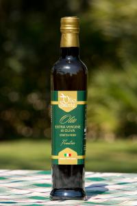 Olio EVO Frantoio 500ml 2018/19 - Olio extravergine di oliva Pugliese cultivar Frantoio Sante in bottiglia da 500 ml - Terre di Ostuni