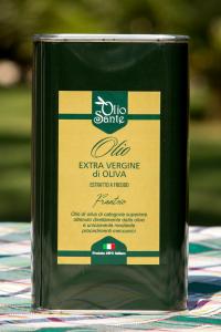 Olio EVO Frantoio 1L 2019/20 - Olio extravergine di oliva Pugliese cultivar Frantoio Sante in latta da 1 Litro - Terre di Ostuni