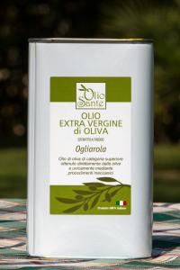 Olio EVO Ogliarola 1L 2018/19 - Olio extravergine di oliva Pugliese cultivar Ogliarola in Latta da 1 Litro - Terre di Ostuni