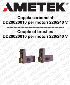 Paar Motorbürsten Ametek Saugmotor 220/240 V