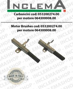 COPPIA di Carboncini Ametek mod: 053200274.00 validi for vacuum motor  Ametek  064300008.00