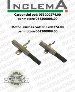 Paar Motorbürsten Ametek mod: 053200274.00 validi für Saugmotor  Ametek  064300008.00