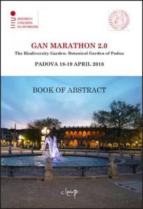GaN Marathon 2.0