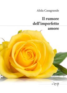 Il rumore dell'imperfetto amore