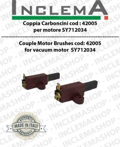 COPPIA di Carboncini moteurs aspiration pour motori SYNCLEAN -  2 x Cod: 42005
