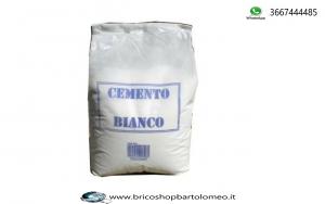 CEMENTO BIANCO RAPIDO IN POLVERE 1 KG
