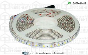 Striscia SMD5050 60 LED Bianco naturale IP65 bobina da 5 mt