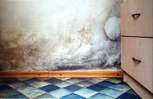 Impianto radiante  per riscaldamento  a pavimento : previene e risolve  muffe .         Prezzo   € / mq