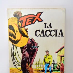 Fumetto Tex Numeri Da Collezione