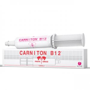CARNITON - CAVALLI