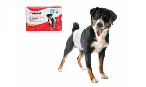 Pannolini a fascia elastica per cani maschi TG. L 60/80cm
