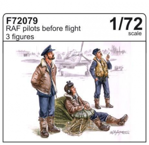 RAF pilots before flight