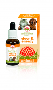VIGOR & ENERGY Essence Animal