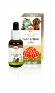 TRANSITION PETS Essence Animal