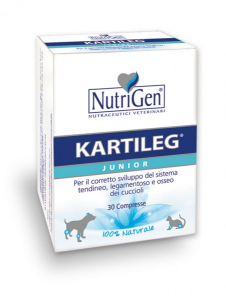 KARTILEG JUNIOR 1gr