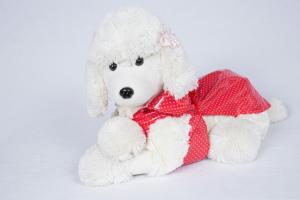Impermeabile per cani  a Pois Fuss Dog  Taglia 20/24/27 cm