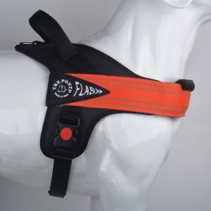 Pettorina  Flash Tre Ponti Disponibile taglia M- L - XL- XXL