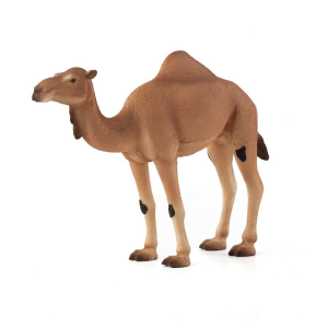 Statuina Animal Planet Cammello Arabo